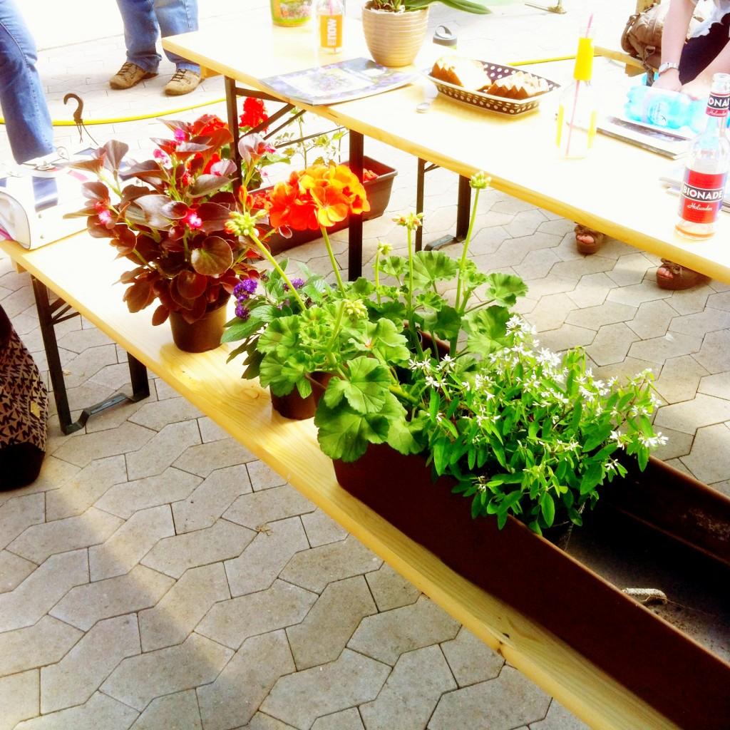 gardening tutorial